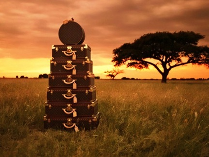 Stack of Luggage on the African Savannah