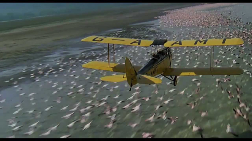 Bi-plane over beach with birds