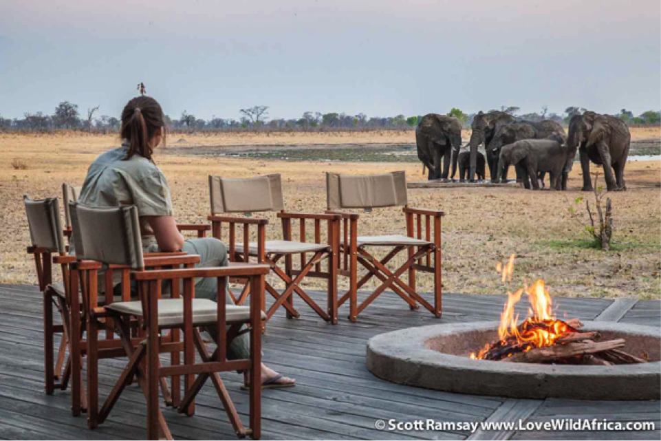 Davison's Camp Manager Kimi White watches some elephants drink from the camp's pan.