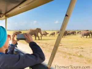 Woman using cellphone on Safari