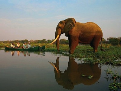 african safari tours options