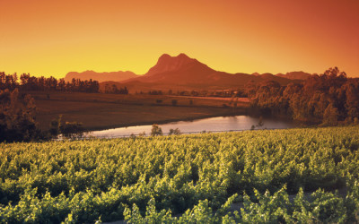 south african holidays cape winelands