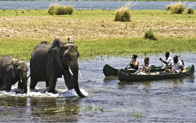 african safari itinerary jeep alternatives
