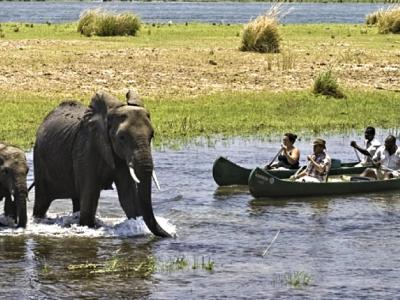 african safari itinerary jeep alternatives