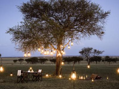 south africa lodge safari stargazing