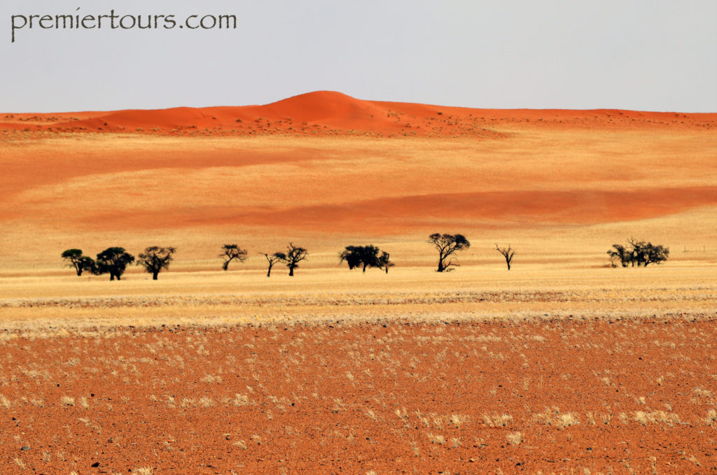 Colors of the Desert of Namibia