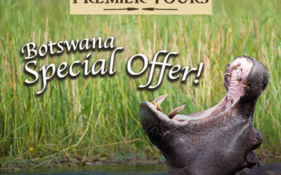 Premier Tours Botswana Special Offer
