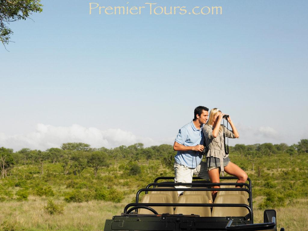 Safari Honeymoon in South Africa