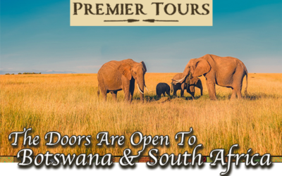 The Doors Are Open to Botswana & South Africa